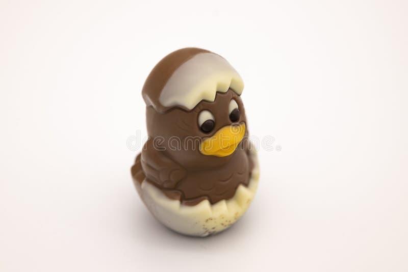 La figura del pollo del chocolate tramó de un huevo para Pascua fotos de archivo libres de regalías