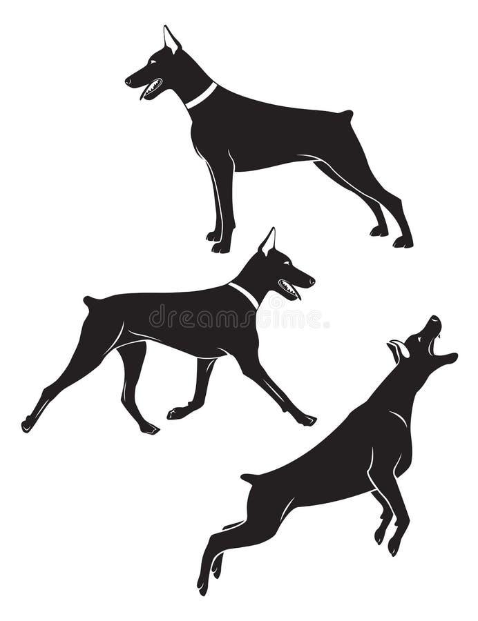 Doberman illustrazione di stock