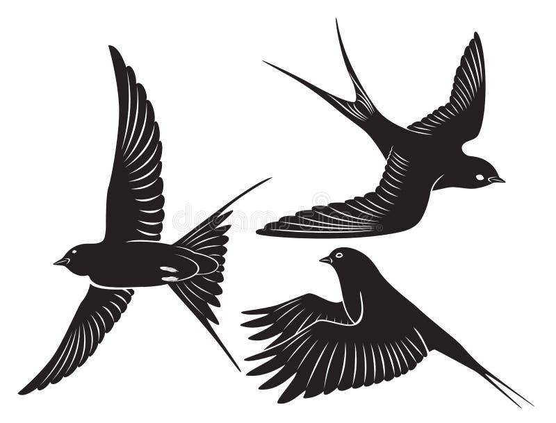 Hirondelle d'oiseau illustration stock