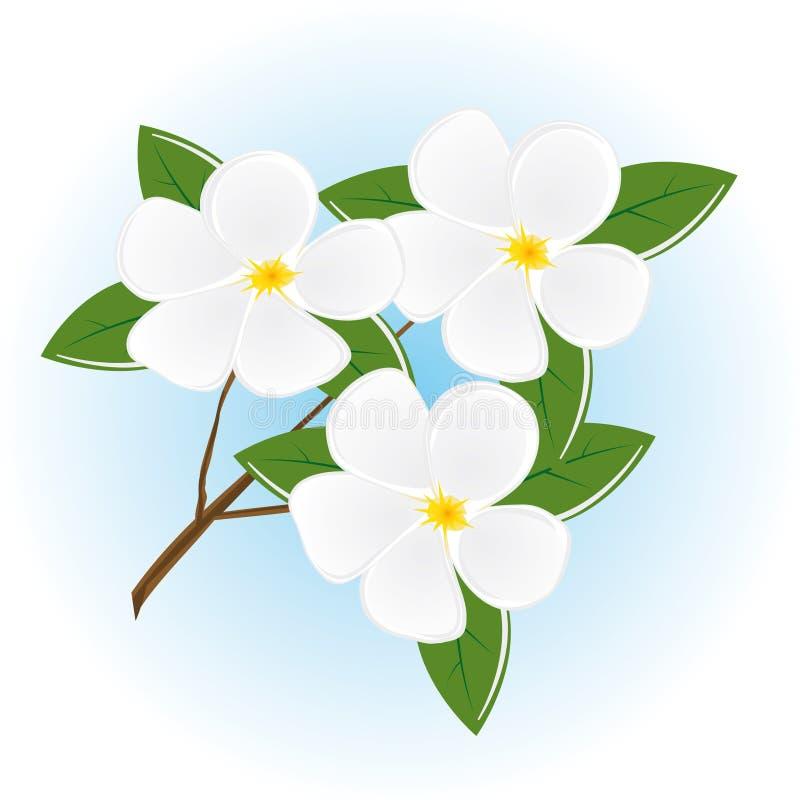 La filiale di un albero con i fiori illustrazione di stock