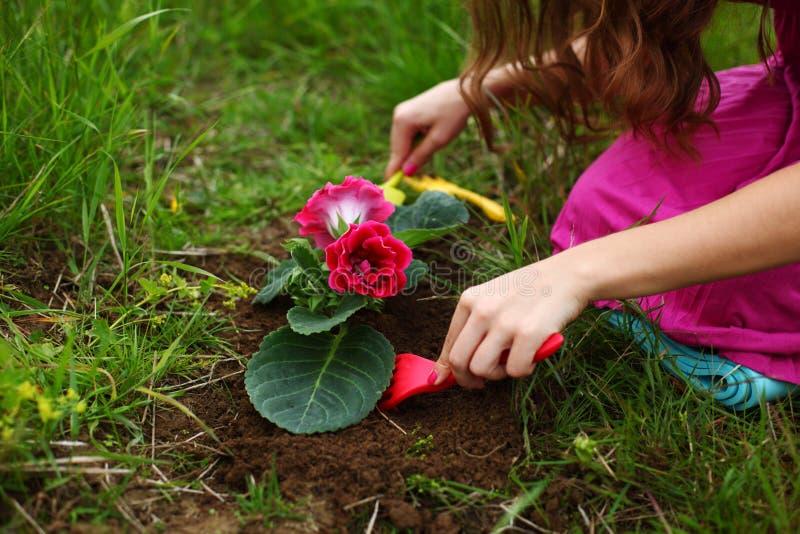 La fille élèvent la fleur photographie stock