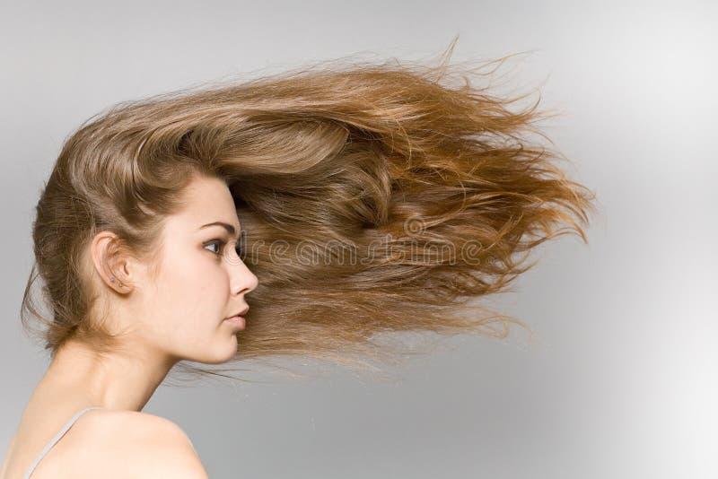 La fille aux cheveux longs photos stock