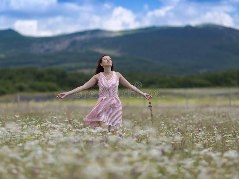 La fille dans la robe sans manche rose marche sur le pré de la camomille photos stock