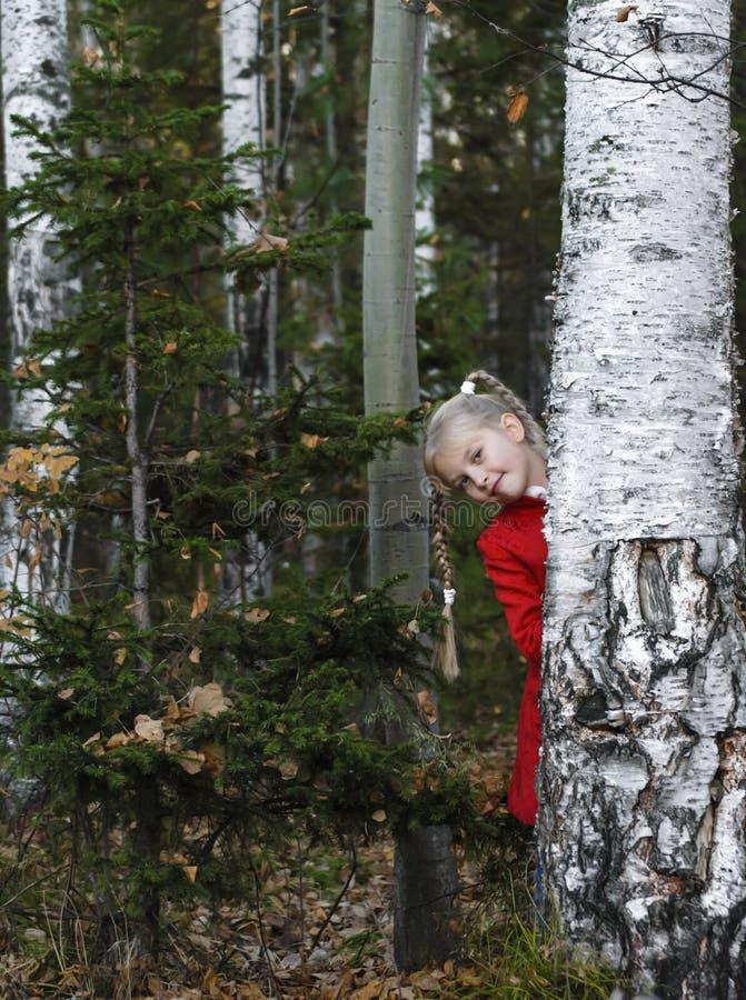 La fille dans le bois photographie stock libre de droits