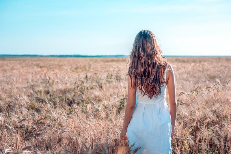 La fille dans le domaine de blé d'été, robe blanche, peau bronzée, va mettre en place, heureux des vacances en air frais Un jour  images libres de droits