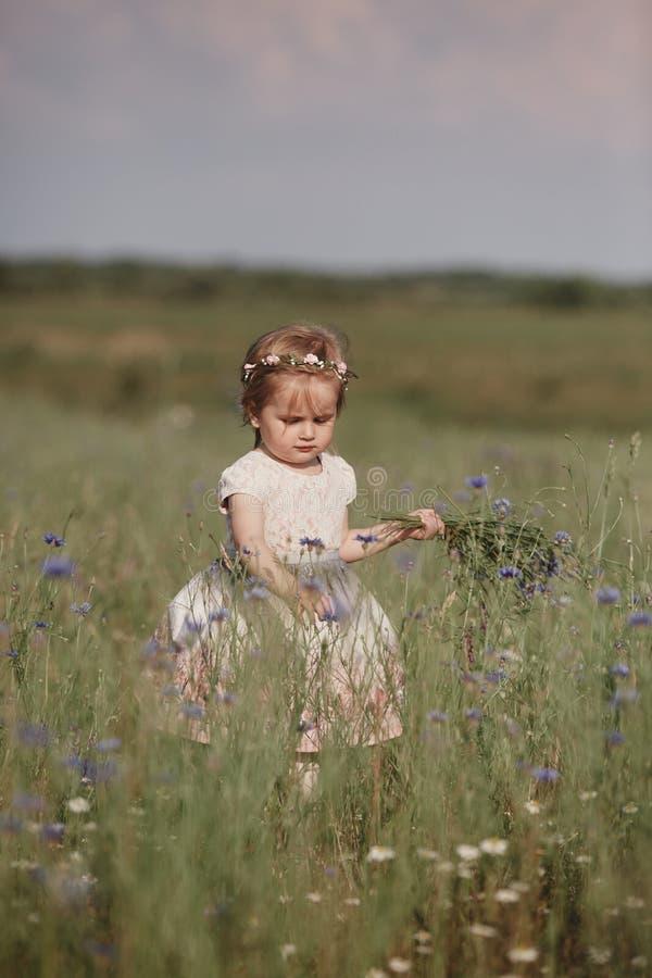 La fille dans un domaine rassemble un bouquet des fleurs la petite fille rassemble des fleurs dans le domaine photo stock