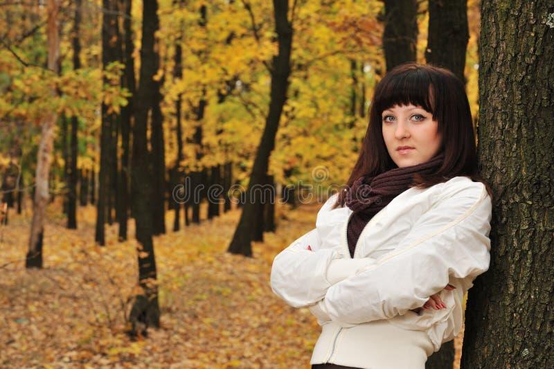 La fille dans une forêt d'automne photographie stock libre de droits