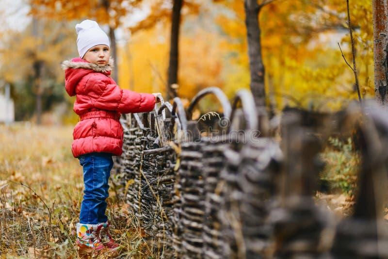 La fille dans une veste chaude et des jeans se tient en parc d'automne photos libres de droits