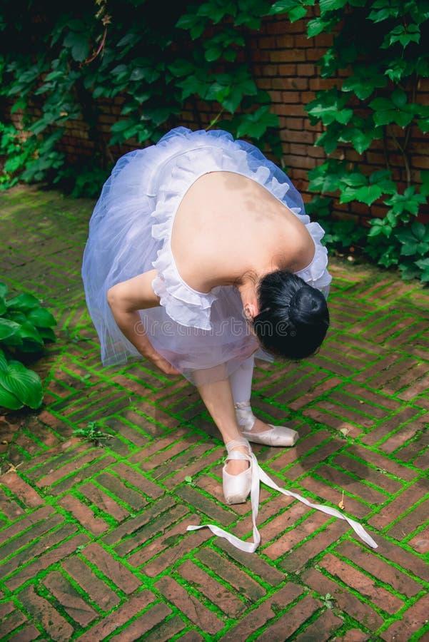 La fille de ballet, attachent ses dentelles image libre de droits