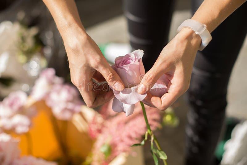 La fille de fleuriste de plan rapproché dispose les fleurs fraîches pour décorer l'événement Épouser le fleuriste s'charge du dér photographie stock libre de droits