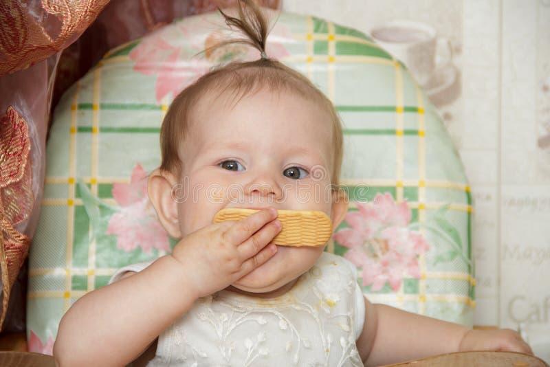 La fille de petit enfant s'assied dans un highchair et mange des biscuits photo stock
