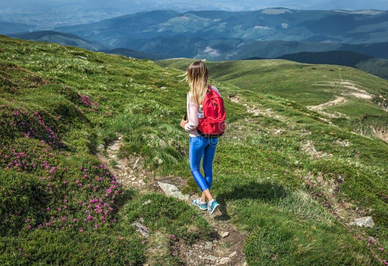 La fille de voyageur avec le sac à dos rouge marche le long du chemin vert en montagnes Rue de fleurs d'été ou de ressort photographie stock
