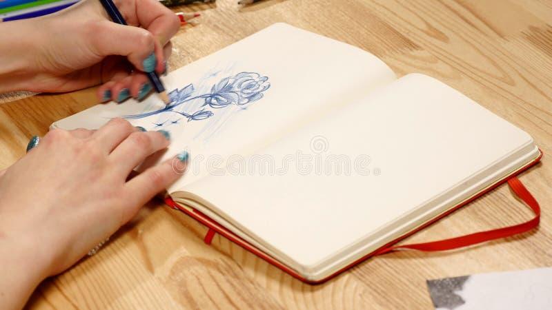 La fille dessine le croquis de crayon sur le papier Fin vers le haut images libres de droits