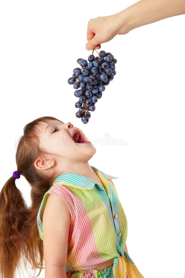 La fille drôle attrape les raisins mûrs de la main photographie stock libre de droits
