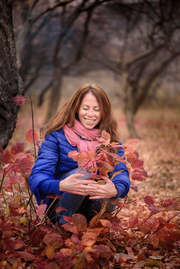 La fille en automne en parc admire le feuillage d'automne rouge photos stock