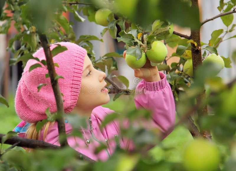 La fille et un pomme-arbre image libre de droits