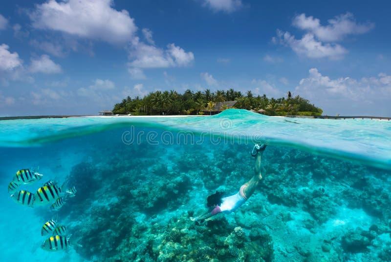 La fille folâtre navigue au schnorchel dans les eaux de turquoise au-dessus d'un récif coralien en Maldives photos libres de droits