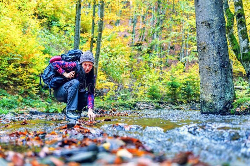 La fille goûte l'eau en rivière de forêt image stock