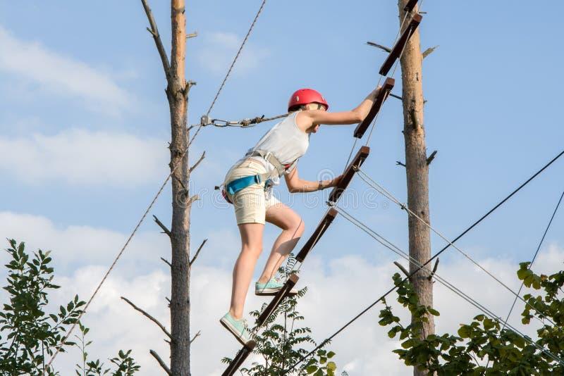 La fille grimpe sur l'échelle de la corde sur le mur d'escalade Alpinisme en randonnée dans les bois image libre de droits