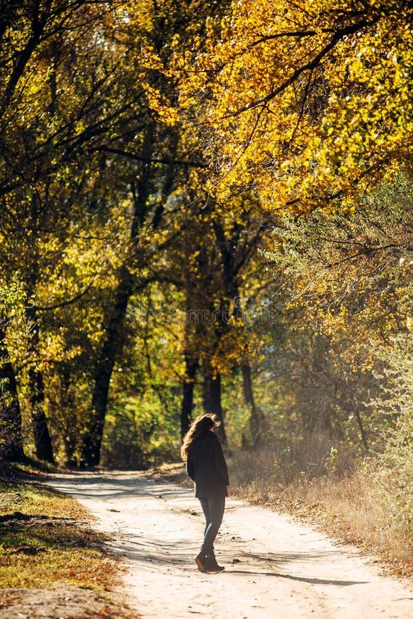 La fille marche en beau parc d'automne images libres de droits