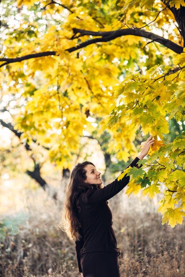 La fille marche en beau parc d'automne photos libres de droits