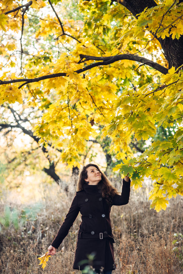 La fille marche en beau parc d'automne photo stock