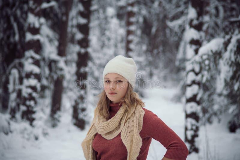 La fille marche sur la forêt d'hiver photo stock