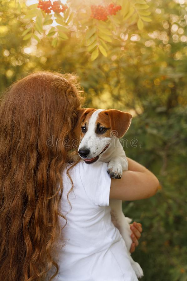 La fille mignonne avec de longs cheveux bouclés embrasse le chiot avec une vue par derrière photographie stock libre de droits