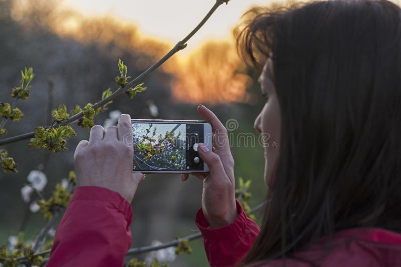La fille prend des photos d'un brin photographie stock