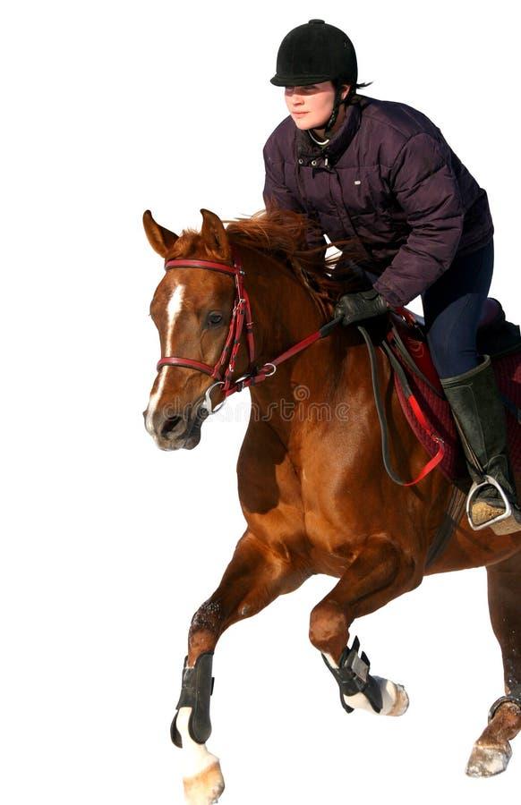 La fille que le cavalier saute sur un cheval photo libre de droits