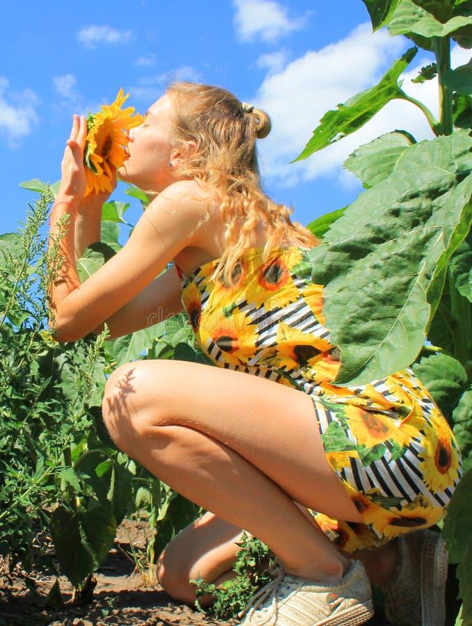 La fille sent une fleur photographie stock libre de droits