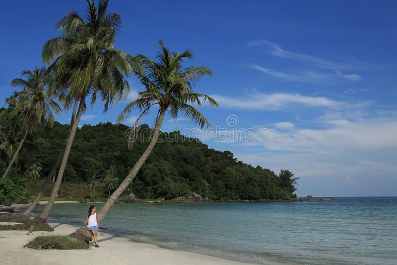 La fille sur la plage contre le contexte de la mer et des palmiers photos libres de droits