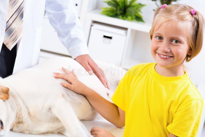 La fille tient un chien dans une clinique vétérinaire photographie stock libre de droits