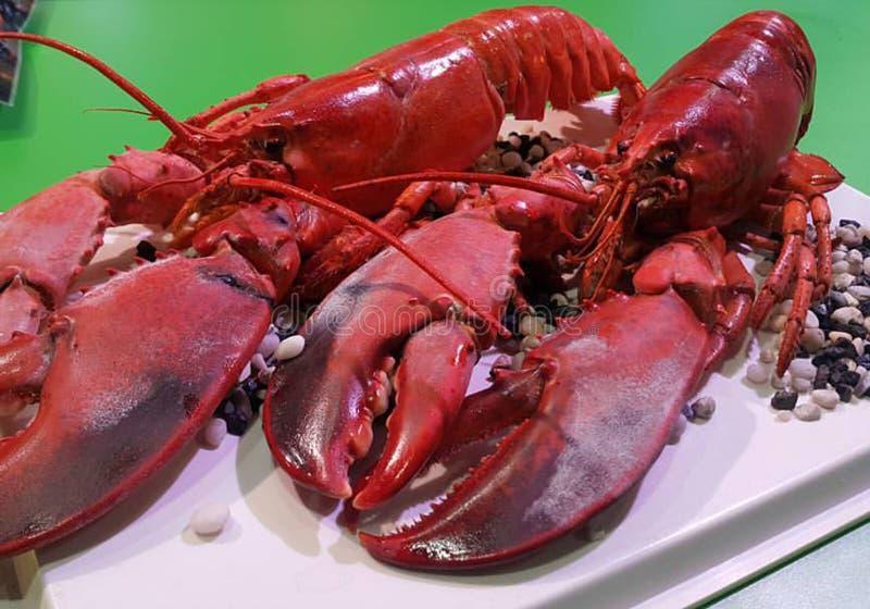 La fin de plateau de préparation de fruits de mer, buffet de fruits de mer, fruits de mer mangent le restaurant photographie stock libre de droits
