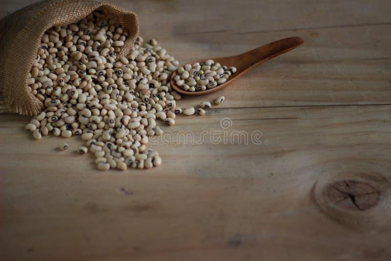 La fin est en hausse un certain soja avec la vie en bois de /Still image stock