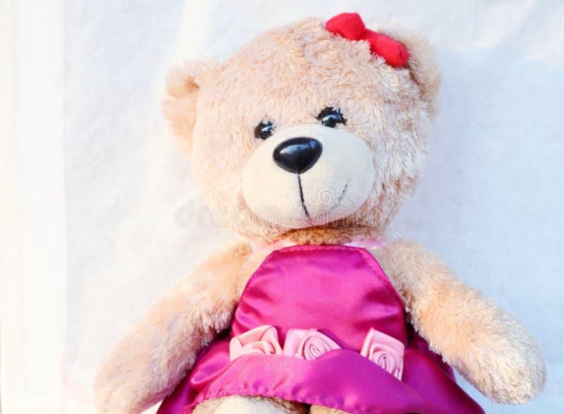 La fin vers le haut de l'ours de nounours mignon est un moral que des filles comme beaucoup Fond blanc photographie stock libre de droits