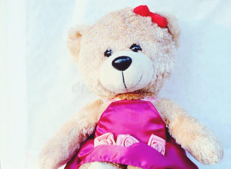 La fin vers le haut de l'ours de nounours mignon est un moral que des filles comme beaucoup Fond blanc image stock