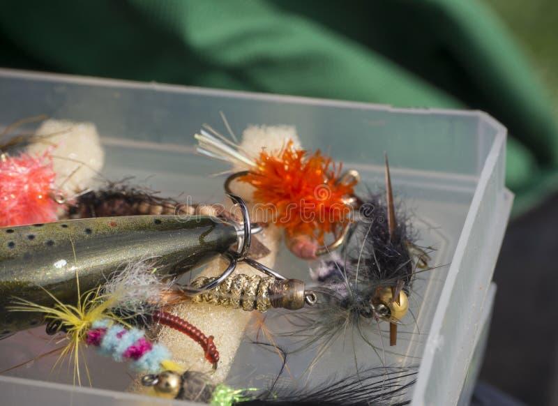 La fin vers le haut du macro de la boîte en plastique avec les mouches colorées de pêche leurrent les amorces, l'abeille, la mouc photos stock