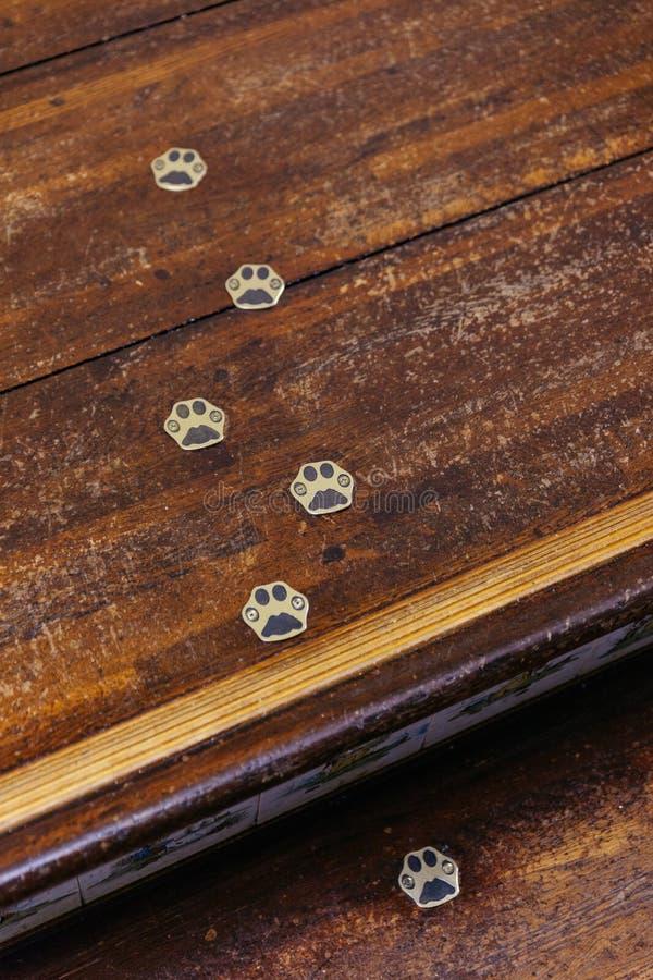 La fin vers le haut du pied de chat métallique trace sur l'escalier en bois photographie stock libre de droits