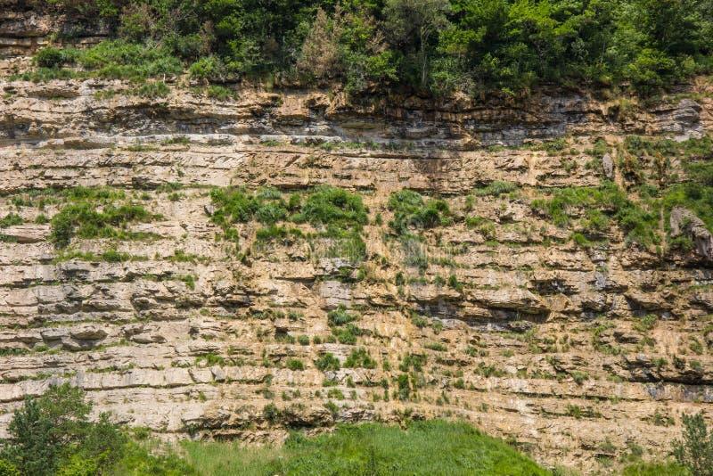 La fine dei dettagli di roccia di pietra naturale astratta ha tagliato la sezione trasversale di struttura di erosione stagionata fotografia stock libera da diritti