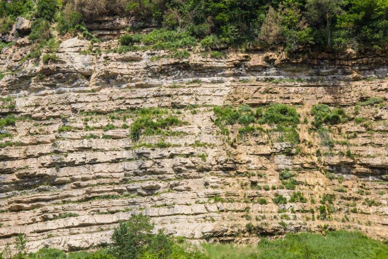 La fine dei dettagli di roccia di pietra naturale astratta ha tagliato la sezione trasversale di struttura di erosione stagionata fotografia stock