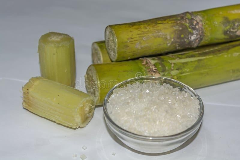 La fine ha tagliato i pezzi di Sugar Cane, Sugar On Bowl, isolato su fondo bianco fotografia stock libera da diritti