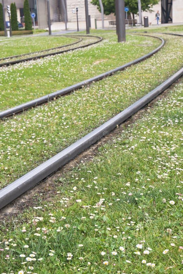 La fine su delle strade ferrate accende l'erba verde nella primavera, Bilbao, spagna del prato inglese fotografie stock libere da diritti