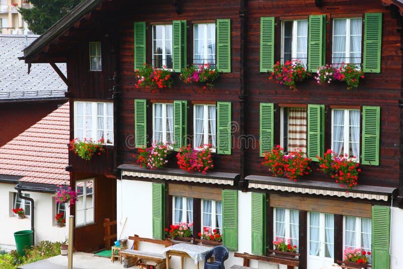 La finestra fiorisce sulla costruzione a Wengen, Svizzera fotografia stock