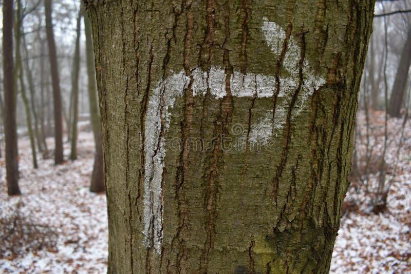 La flèche droite a pulvérisé sur un arbre photographie stock libre de droits