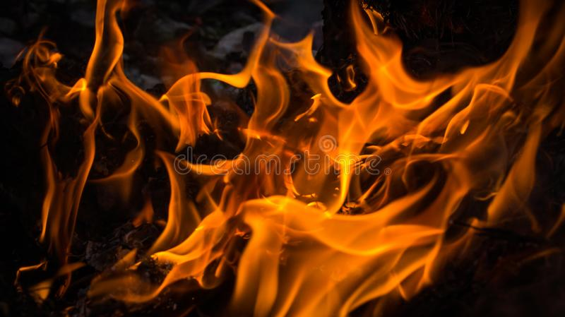 La flamme du feu brûle sur le fond noir photographie stock