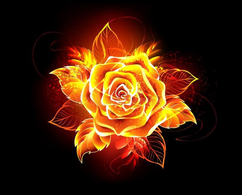 La flamme rose de floraison du feu s'est levée illustration stock