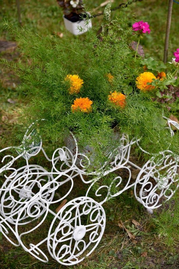 la fleur dans le support original de pot de fleurs dans un chariot avec roule dedans photo stock. Black Bedroom Furniture Sets. Home Design Ideas