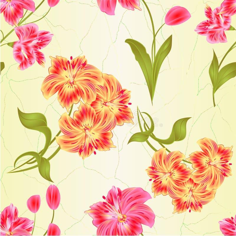 La fleur de groupe sans couture de texture de Lily Alstroemeria de tige et le plan rapproché oranges et roses de feuilles ont iso illustration stock