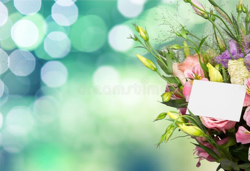 la fleur de jour donne à des mères le fils de momie à photos stock